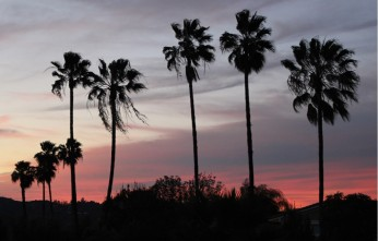 sunset pic Hacienda Heights